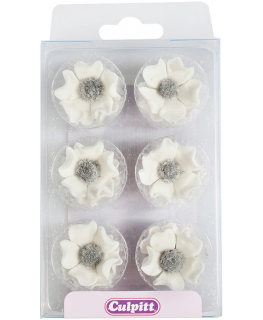 Sugar Anemones - White 28mm - single