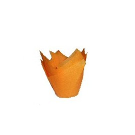 Orange Tulip Baking Case (200)