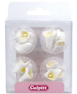 Mini White Sugar Calla Lily